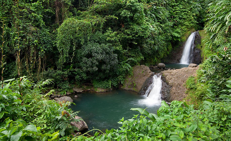 Grenada yacht charter, The Seven Sisters Falls rainforest