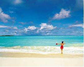 Bahamas Luxury Yacht Charter, paradise beach.