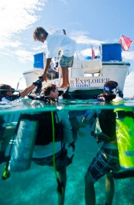 How to Charter a Yacht - scuba diving