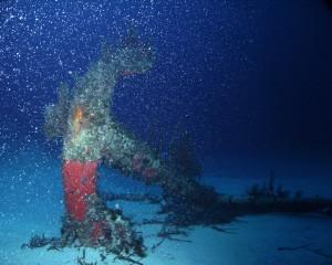 Mediterranean Diving Cirkewwa Wrek Diving Anchor