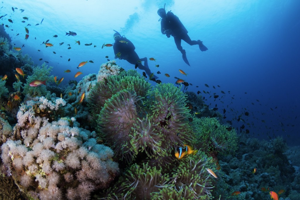 Top 10 Sites to go Diving in the Mediterranean