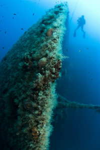 Mediterranean Diving MS Zenobia Cyprus
