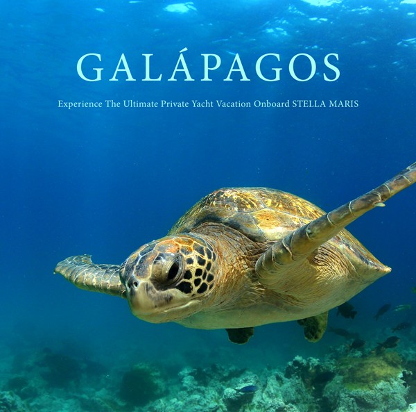 Luxury Yacht Charter Galapagos – 8 Days