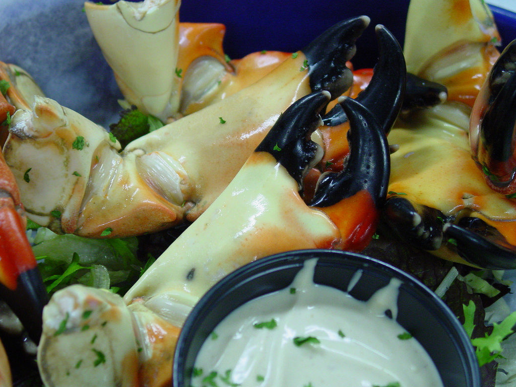Eat Stone Crab in Miami Beach Marina