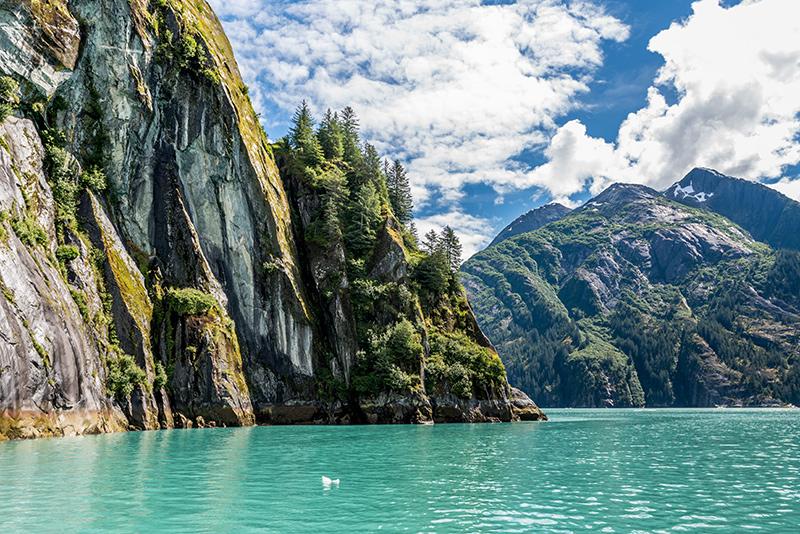Alaska-Yacht-charter-in-Tracy-Arms- Alaskan Yacht Charter