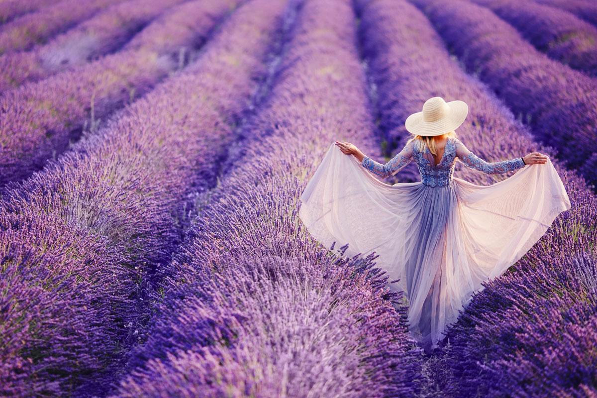 Pelindaba-Lavender-Farm