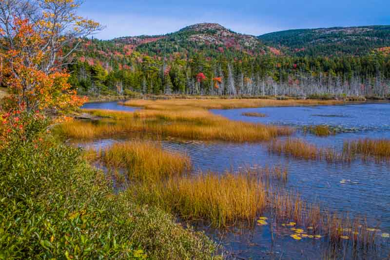 Nature views during a coastal Maine yacht charter