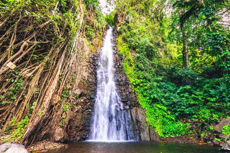 Rainforest waterfall on a yacht charter itinerary in Grenada