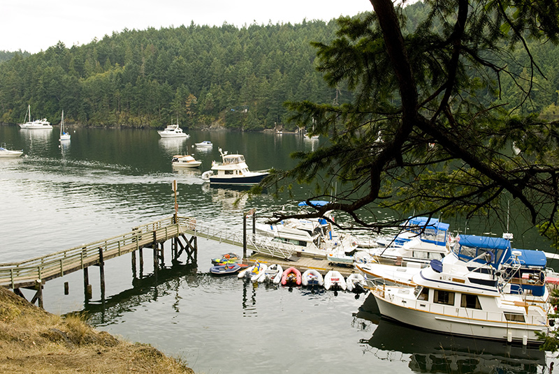Stuart Island harbor on a yacht charter itinerary in San Juan Islands