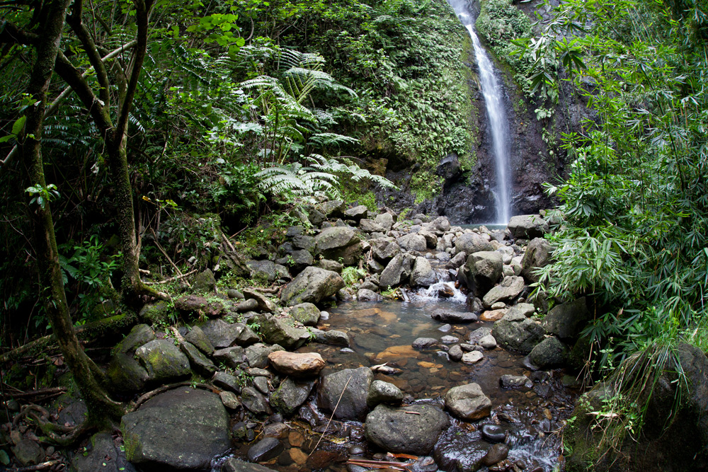 Waterfall in the rainforest, French Polynesia yacht charter
