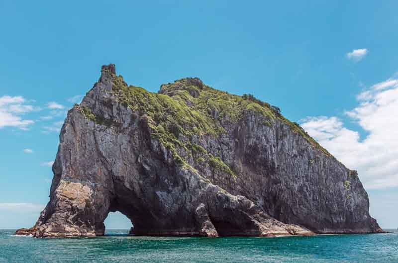 Cliff in Whale Bay on New Zealand yacht charter