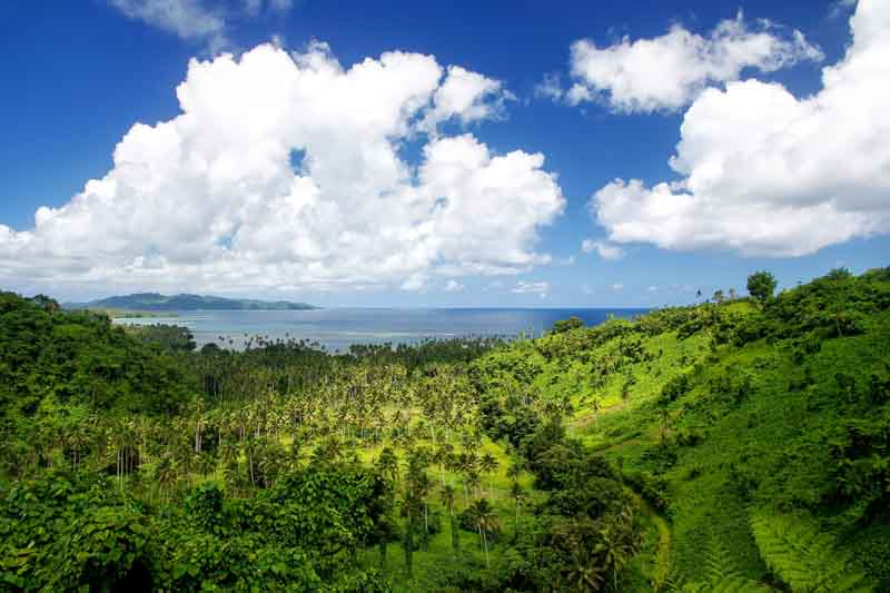 Lush forest on a yacht charter itinerary in Fiji