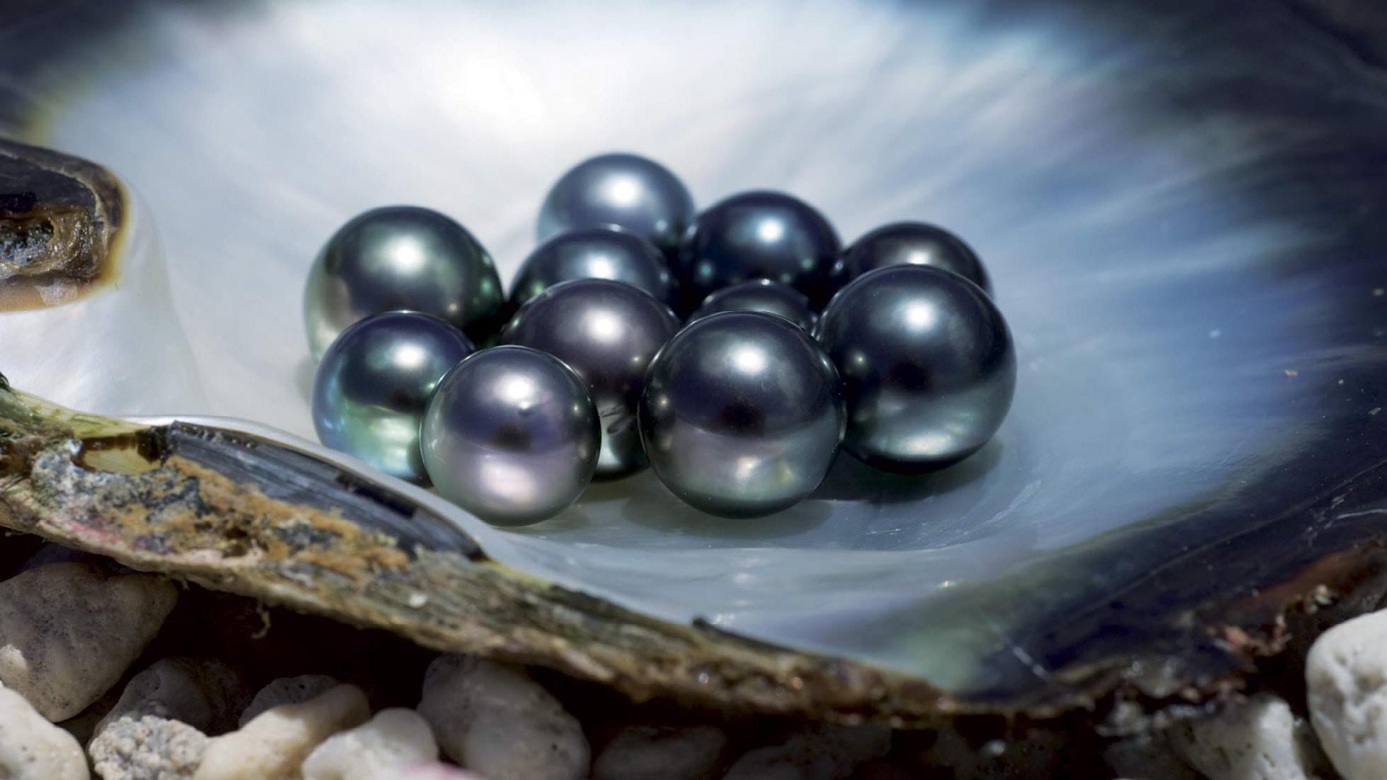 Tahitian pearls with a yacht charter itinerary Tahiti