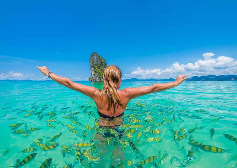 Swimming with fish with a yacht charter itinerary Thailand